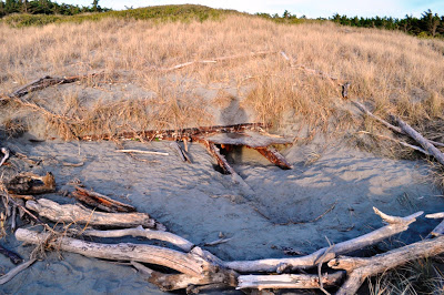 The dunes have swallowed up the wreck of the Hydrabad